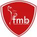 federacion de balonmano madrid